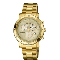 Picture of CITIZEN-Eco-Drive AML 3.0 Gold-Tone Stainless Steel Womens Watch