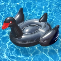 Picture of SWIMLINE-Giant Black Swan