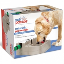 Picture of PET PARADE-Automic Fountain