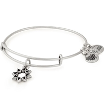 Picture of ALEX AND ANI-Eight Pointed Star Charm Bangle - (Rafaelian Silver Finish)