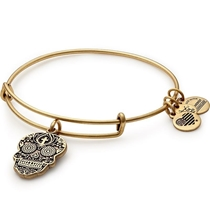 Picture of ALEX AND ANI-Calavera Charm Bangle - (Rafaelian Gold Finish)