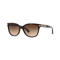 Picture of COACH COMPANY-Ladies Modern Sunglasses - (Dark Brown)