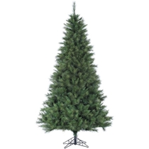 Picture of FRASER HILL-9-Ft. Canyon Pine Christmas Tree