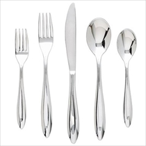 Picture of GINKGO CUTLERY-20Pc 18/10 Stainless Flatware Set-Fontur