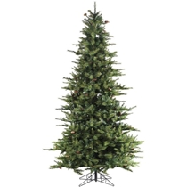 Picture of FRASER HILL-7-Ft. Southern Peace Pine Christmas Tree