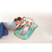 Picture of HAPETOYS-Portable Baby Gym